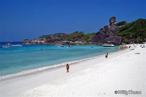 Similan Islands - What to Do in the Similans?