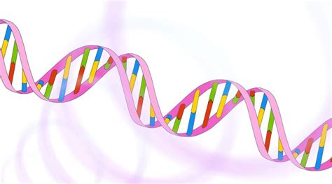 Sequencing at Speed | Video | yourgenome