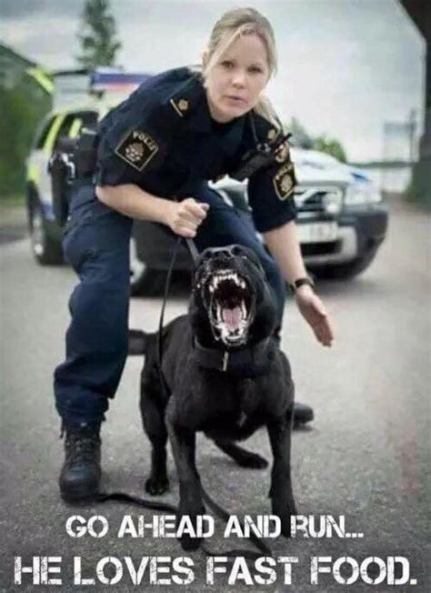 Swedish Police | Funny animals, Police humor, Funny pictures