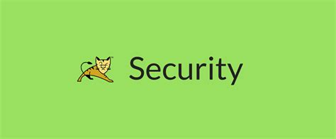 Secure Tomcat with Set-Cookies Secure Flag