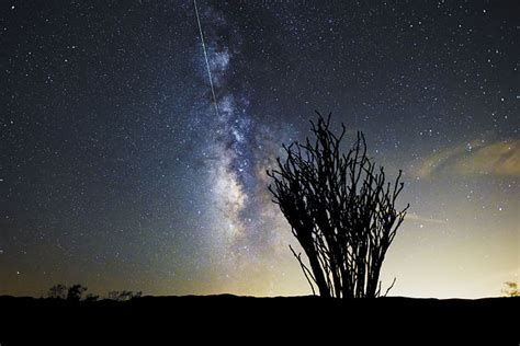 File:Perseid Meteor Shower over the Ocotillo Patch; 8-12